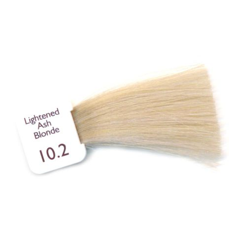 N10.2 - Lightened Ash Blonde